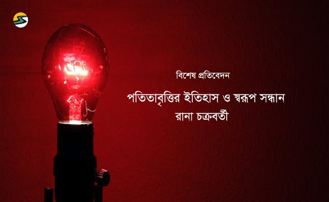Irabotee.com,irabotee,sounak dutta,ইরাবতী.কম,copy righted by irabotee.com,A history of prostitution